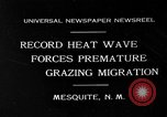 Image of goat herd Mesquite New Mexico USA, 1931, second 1 stock footage video 65675054991