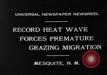 Image of goat herd Mesquite New Mexico USA, 1931, second 2 stock footage video 65675054991