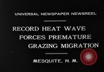 Image of goat herd Mesquite New Mexico USA, 1931, second 3 stock footage video 65675054991