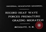 Image of goat herd Mesquite New Mexico USA, 1931, second 8 stock footage video 65675054991