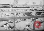 Image of repatriation of French prisoners Paris France, 1945, second 3 stock footage video 65675055110