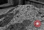 Image of Buchenwald concentration camp Germany, 1945, second 9 stock footage video 65675055137