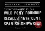 Image of wild ponies Chincoteague Island Virginia USA, 1939, second 1 stock footage video 65675055162
