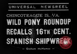 Image of wild ponies Chincoteague Island Virginia USA, 1939, second 6 stock footage video 65675055162