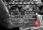 Image of interview of prisoners Dachau Germany, 1945, second 5 stock footage video 65675055227
