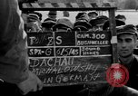 Image of prisoner's interview Dachau Germany, 1945, second 6 stock footage video 65675055230
