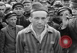 Image of interview of prisoner Dachau Germany, 1945, second 6 stock footage video 65675055247