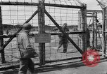 Image of dead bodies Landsberg Germany, 1945, second 6 stock footage video 65675055256