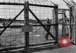 Image of dead bodies Landsberg Germany, 1945, second 11 stock footage video 65675055256
