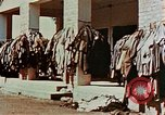 Image of Dachau Concentration Camp Dachau Germany, 1945, second 8 stock footage video 65675055275