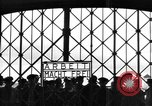 Image of political prisoners Bavaria Germany, 1945, second 8 stock footage video 65675055297