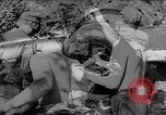 Image of German artillery Europe, 1942, second 5 stock footage video 65675055482