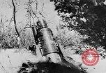 Image of German artillery Europe, 1942, second 9 stock footage video 65675055482