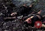 Image of dead Viet Cong Vietnam Vinh Te Canal, 1969, second 4 stock footage video 65675055543