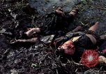 Image of dead Viet Cong Vietnam Vinh Te Canal, 1969, second 5 stock footage video 65675055543