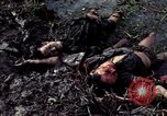 Image of dead Viet Cong Vietnam Vinh Te Canal, 1969, second 6 stock footage video 65675055543