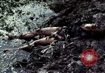 Image of dead Viet Cong Vietnam Vinh Te Canal, 1969, second 9 stock footage video 65675055543
