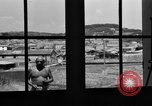 Image of Pablo Picasso Vallauris France, 1950, second 9 stock footage video 65675055613