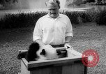 Image of Giant Panda Chi Chi Frankfurt Germany, 1958, second 7 stock footage video 65675055655