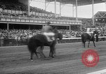 Image of Preakness Stakes Baltimore Maryland USA, 1956, second 11 stock footage video 65675055720