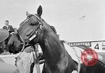 Image of Camden Stakes Camden New Jersey USA, 1956, second 7 stock footage video 65675055721