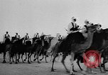 Image of Camel Corps Algeria, 1957, second 11 stock footage video 65675055742
