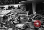 Image of children at zoo Canada, 1959, second 12 stock footage video 65675055776