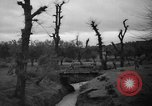 Image of French troops Algeria, 1955, second 7 stock footage video 65675056008