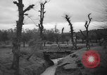 Image of French troops Algeria, 1955, second 8 stock footage video 65675056008