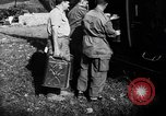 Image of French forces Algeria, 1954, second 7 stock footage video 65675056013