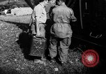 Image of French forces Algeria, 1954, second 8 stock footage video 65675056013