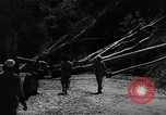 Image of French forces Algeria, 1954, second 9 stock footage video 65675056018