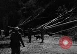 Image of French forces Algeria, 1954, second 10 stock footage video 65675056018
