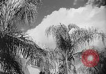 Image of French official Algeria, 1954, second 8 stock footage video 65675056039