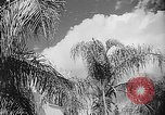 Image of French official Algeria, 1954, second 9 stock footage video 65675056039