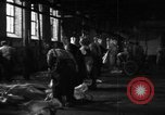 Image of activities at slaughterhouse Germany, 1946, second 7 stock footage video 65675056076