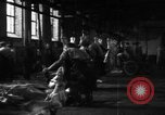 Image of activities at slaughterhouse Germany, 1946, second 8 stock footage video 65675056076