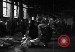 Image of activities at slaughterhouse Germany, 1946, second 9 stock footage video 65675056076