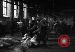 Image of activities at slaughterhouse Germany, 1946, second 11 stock footage video 65675056076