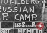 Image of Russian Displaced Persons Camp Heidelberg Germany, 1945, second 2 stock footage video 65675056137