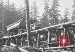 Image of wooden track Aberdeen Washington USA, 1930, second 2 stock footage video 65675056181