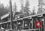 Image of wooden track Aberdeen Washington USA, 1930, second 3 stock footage video 65675056181