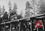 Image of wooden track Aberdeen Washington USA, 1930, second 5 stock footage video 65675056181