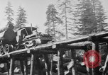 Image of wooden track Aberdeen Washington USA, 1930, second 6 stock footage video 65675056181