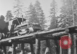 Image of wooden track Aberdeen Washington USA, 1930, second 8 stock footage video 65675056181