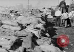 Image of Canadian rum cargo destroyed in prohibition San Francisco California USA, 1930, second 9 stock footage video 65675056183