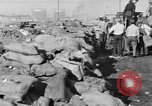 Image of Canadian rum cargo destroyed in prohibition San Francisco California USA, 1930, second 12 stock footage video 65675056183