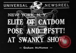 Image of 39th Annual Cat Show New York United States USA, 1941, second 2 stock footage video 65675056193