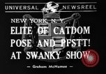 Image of 39th Annual Cat Show New York United States USA, 1941, second 7 stock footage video 65675056193