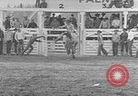 Image of rodeo competition Palm Springs California USA, 1952, second 9 stock footage video 65675056219